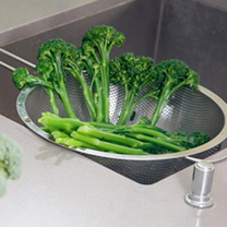 Broccoli Seeds - F1 Bellaverde Sibsey