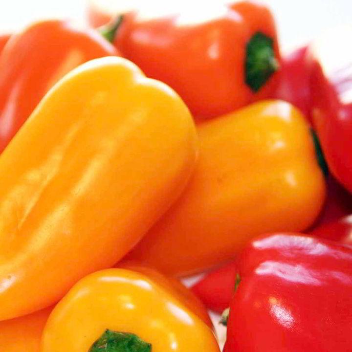 Pepper Sweet Seeds - F1 Blockie Mix