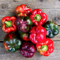 Pepper Seeds - F1 Cardinal (Purple)