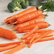 Part of the Sutton's Seeds Vegetable Heritage Range Early Nantes 5 is a suberb tasting carrot that's excellent for successional sowing, or in frames o