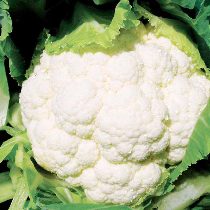 Cauliflower Seeds - F1 Seoul