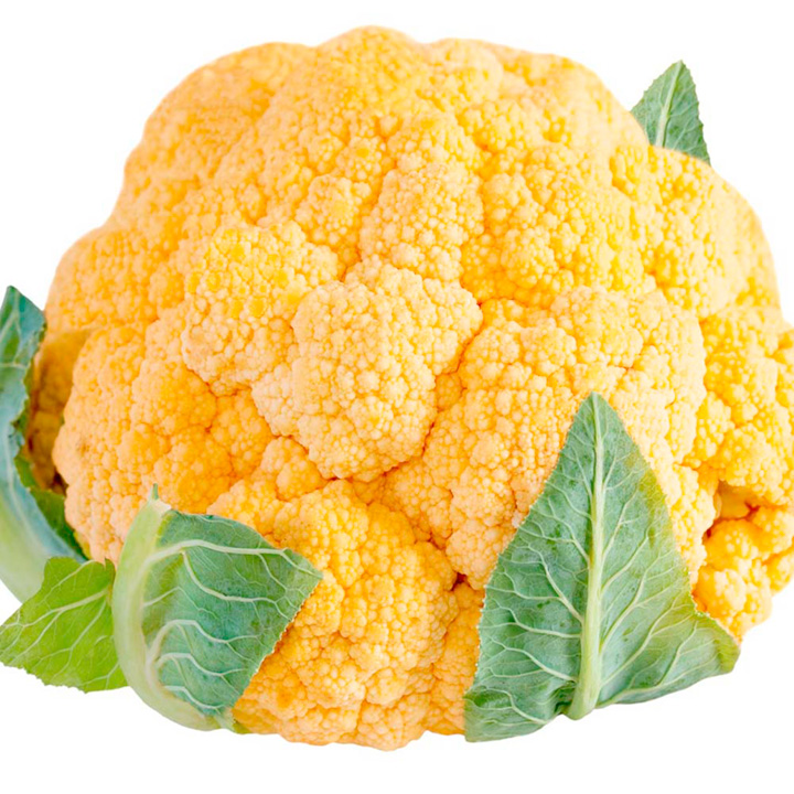 Cauliflower Plants - Sunset Orange