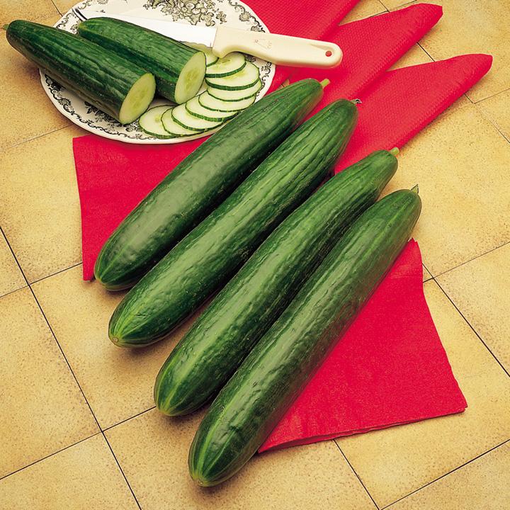 Cucumber Seeds - Long & Short