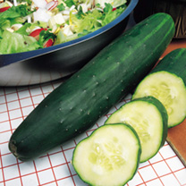 Propagation & Patio Salad Seed Growing Kit