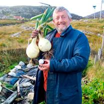 Onion Seeds - Kelsae
