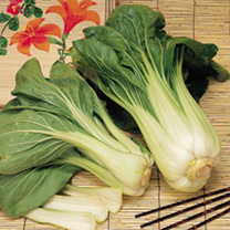 Seed Tape - Pak Choi Red & White