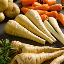 Part of the Sutton's Seeds Vegetable Heritage RangeExcellent for exhibition and for culinary purposes. Long, smooth-skinned roots with considerable re