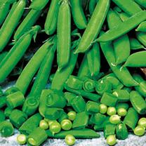 Pea Seeds - Sugarbon