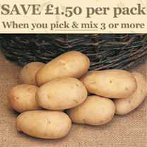 Seed Potatoes - Bargain Patio Growing Kits