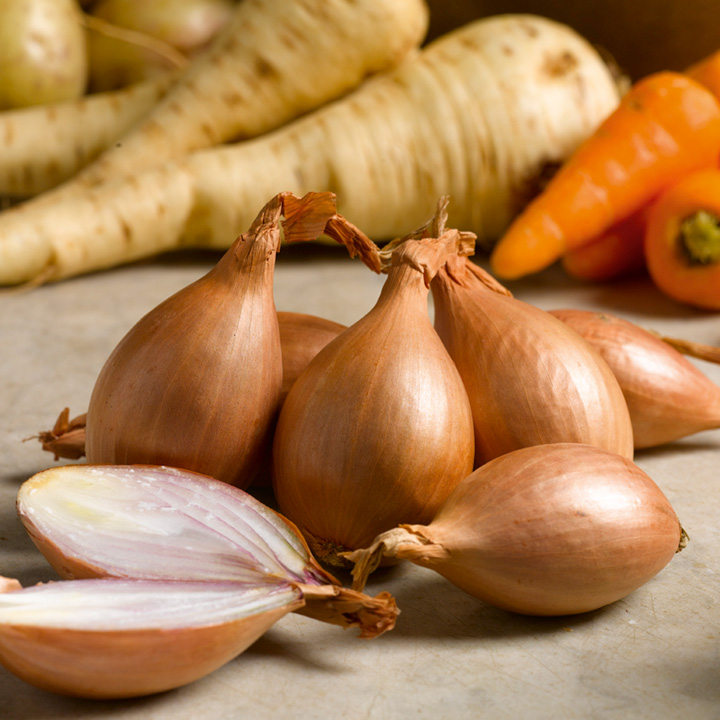 Shallot Sets Red Gourmet