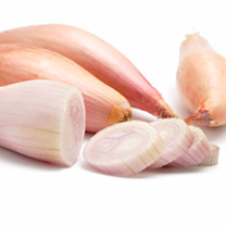 An excellent elongated banana-type variety with copper coloured skins and pink flesh. Each shallot yields 6-8 bulbs at harvest. Very easy to peel and