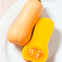 Squash Seeds - F1 Butterscotch