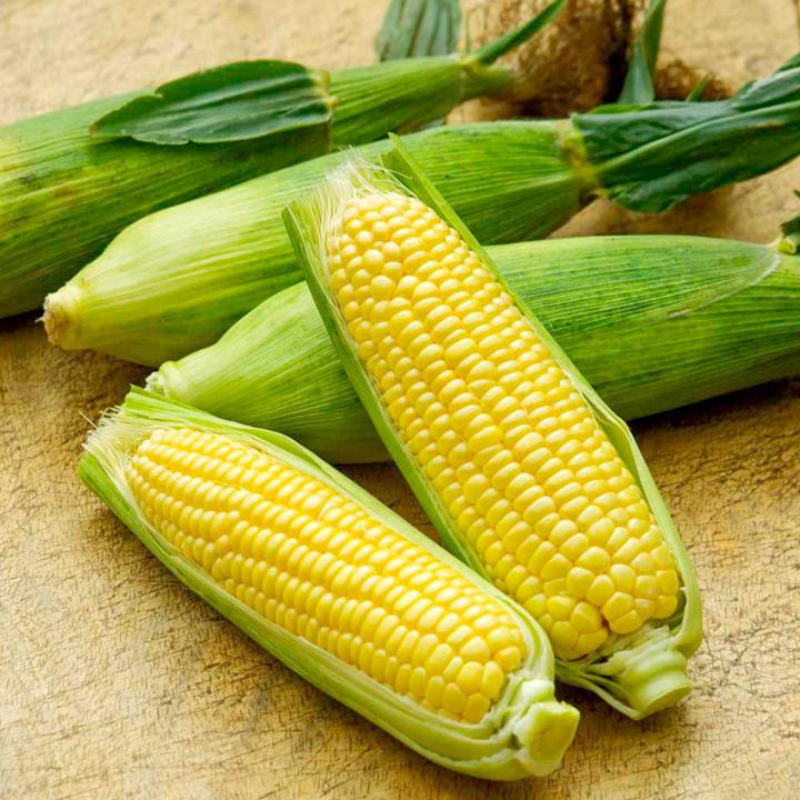 Sweet Corn - F1 Mirai Picnic