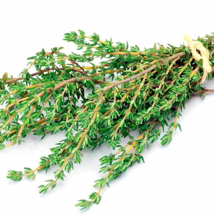Herb Plant - Thyme