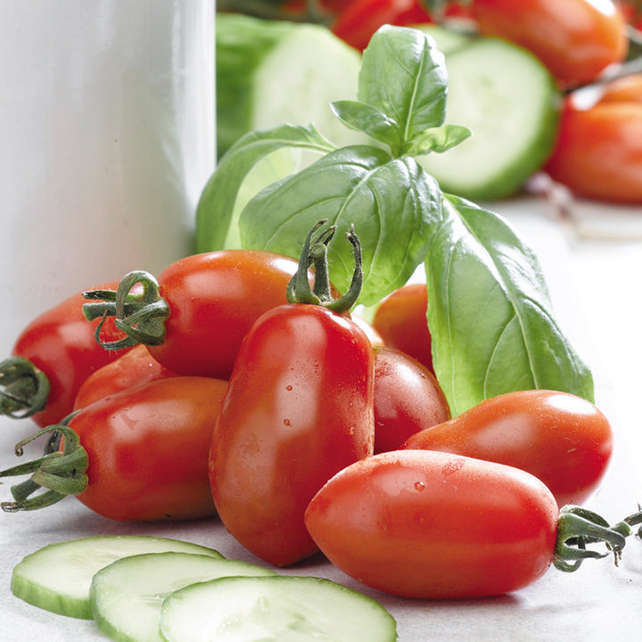 Tomato Seeds - San Marzano 2