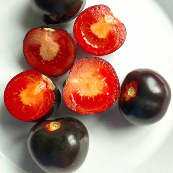 Grafted Tomato Plants - The Black Tomato Indigo Rose