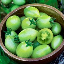 Tomato Seeds - Twin Pack Green Envy/Russian Rose