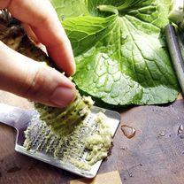 Wasabi Plant