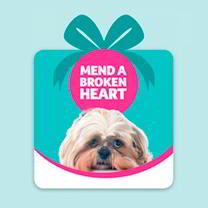 Pet Saving Gift - Mend a Broken Heart