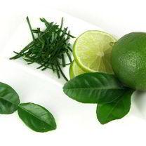 Kaffir Lime Plant & James Wong's Homegrown Revolution Book