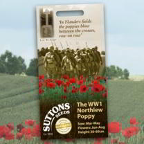 Poppy Seeds - The WW1 Northlew Poppy