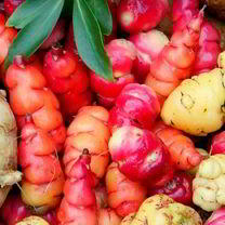 New Zealand Yam Roots