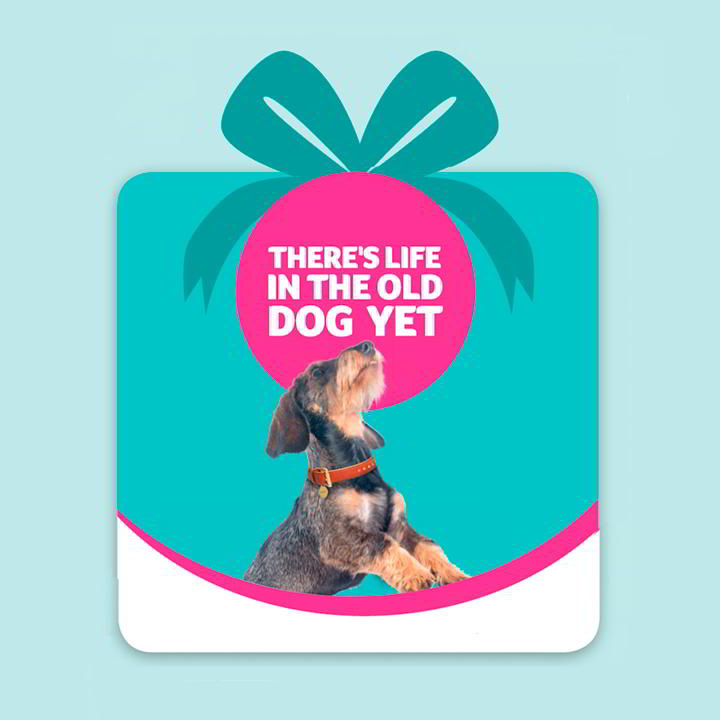 Pet Saving Gift - There's Life in the Old Dog (or Cat) Yet