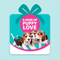 Pet Saving Gift - A Dose of Puppy Love