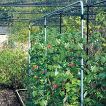 Raspberry Support - Galvanised