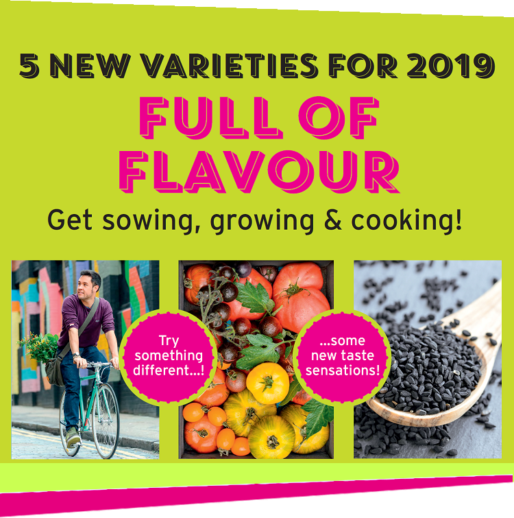 New James Wong variety for 2019