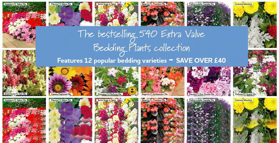 bumper bedding extra value 540