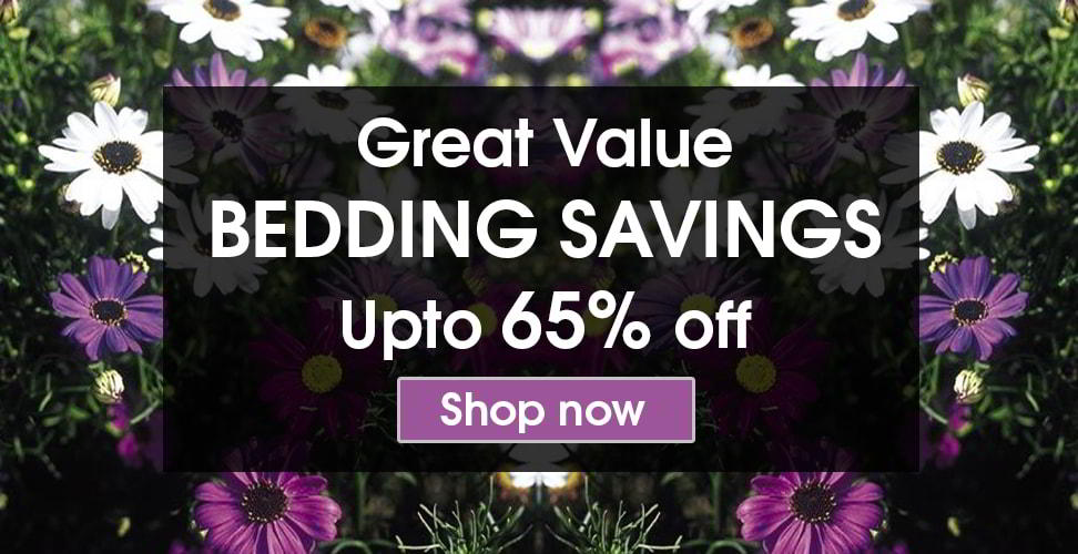 bedding savings