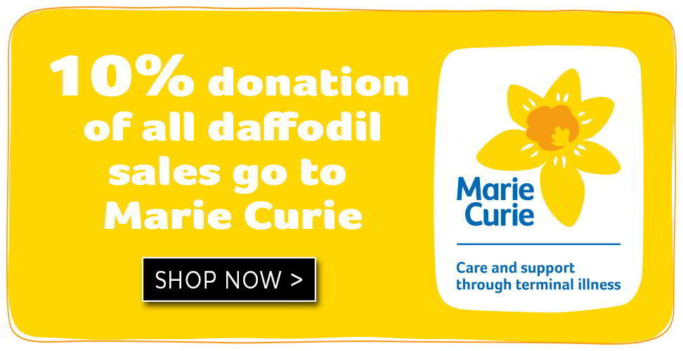 donate to marie curie