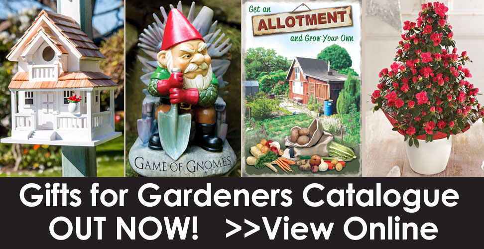 view suttons gift catalogue online