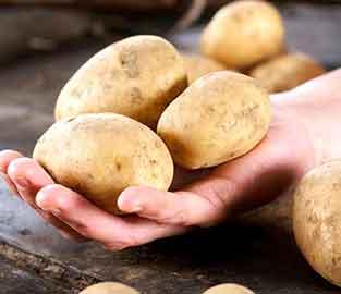 View our Late Season Potatoes