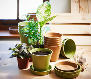 View All Planters & Containers