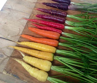 Veg Seeds to sow in April