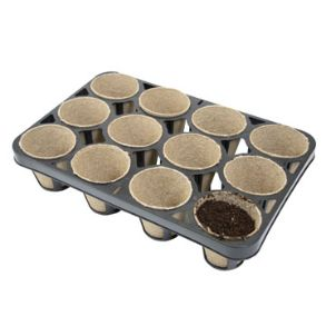 Skelly Tray 3 Pack - Save £4