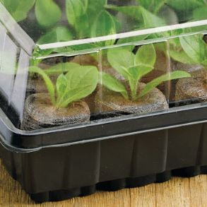 Sow & Grow Propagator - Half Price