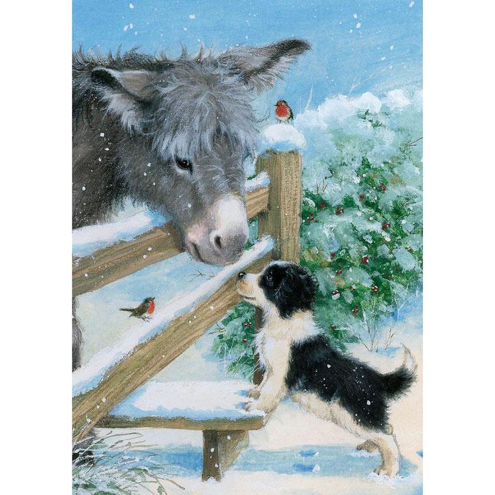 rspca christmas cards
