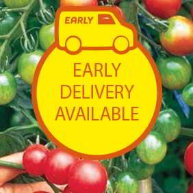 Early Delivery Flower and Vegetable Plants
