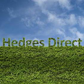 Hedges Direct