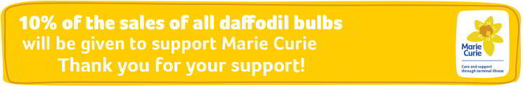 0% of the Sales of all daffodils where you see the badge will be donated to support Marie Curie - Thank you for your support!