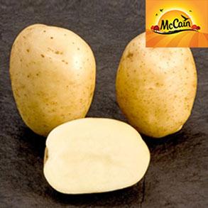 NEW McCain Potato Range