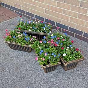 Trough Style Plastic Planters - 2 FREE!