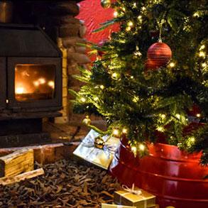 Christmas Gifts.A Great Choice Of Christmas Gifts Pdsa