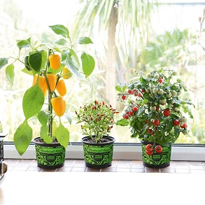 Windowsill Range