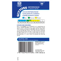 Antirrhinum Seeds - F1 Crackle & Pop Mix