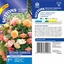 Begonia (Tuberous) Seeds - Parisienne Trailing Mix
