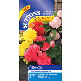 Begonia (Tuberous) Seeds - F1 Nonstop Mix